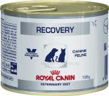 Корм для кошек и собак Royal Canin Recovery 195г